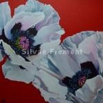 White Oriental PoppyHuile sur Tintoretto20 x 20 cm