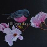 Pink Robin IHuile sur bois10 x 10 cm