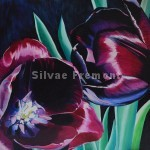 Black TulipHuile sur bois30 x 30 cm