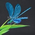 Ziggy the dragonflyHuile sur bois10 x 10 cm