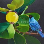 Tangara EmeraudeHuile sur bois22,5 x 30 cm
