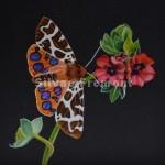 Tiger ButterflyHuile sur bois10 x 10 cm