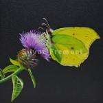 LemonHuile sur bois10 x 10 cm